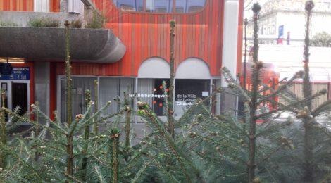 Symbolbild, blühende Pflanzen vor einer Bibliothek
